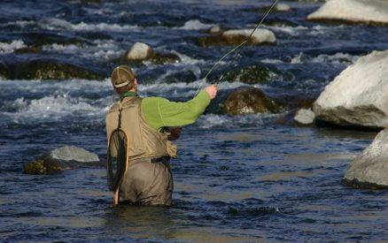 fly fishing in Stanley, Idaho