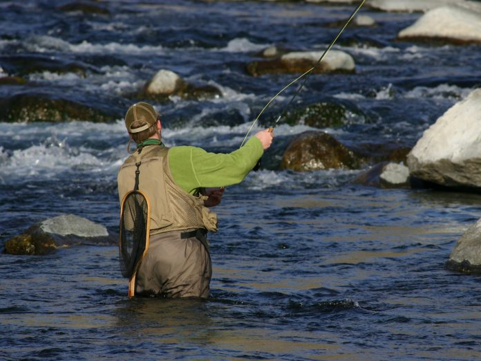 fly fishing in Stanley, Idaho