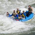 whitewater rafting down the Salmon River