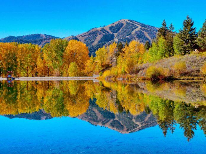 fall foliage in Idaho